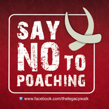 Say no to Poaching Logo