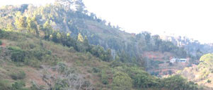 PARE MOUNTAINS