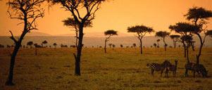 UNTOUCHED TANZANIA