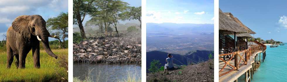 Join a group on Safari November 2014